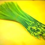 ニラの茎というかニラの花というかつぼみ